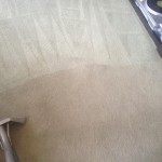 Carpet-Cleaning-West Palm Beach