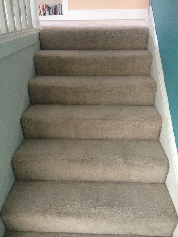 ... Stairs Carpet Cleaners West Palm Beach ...