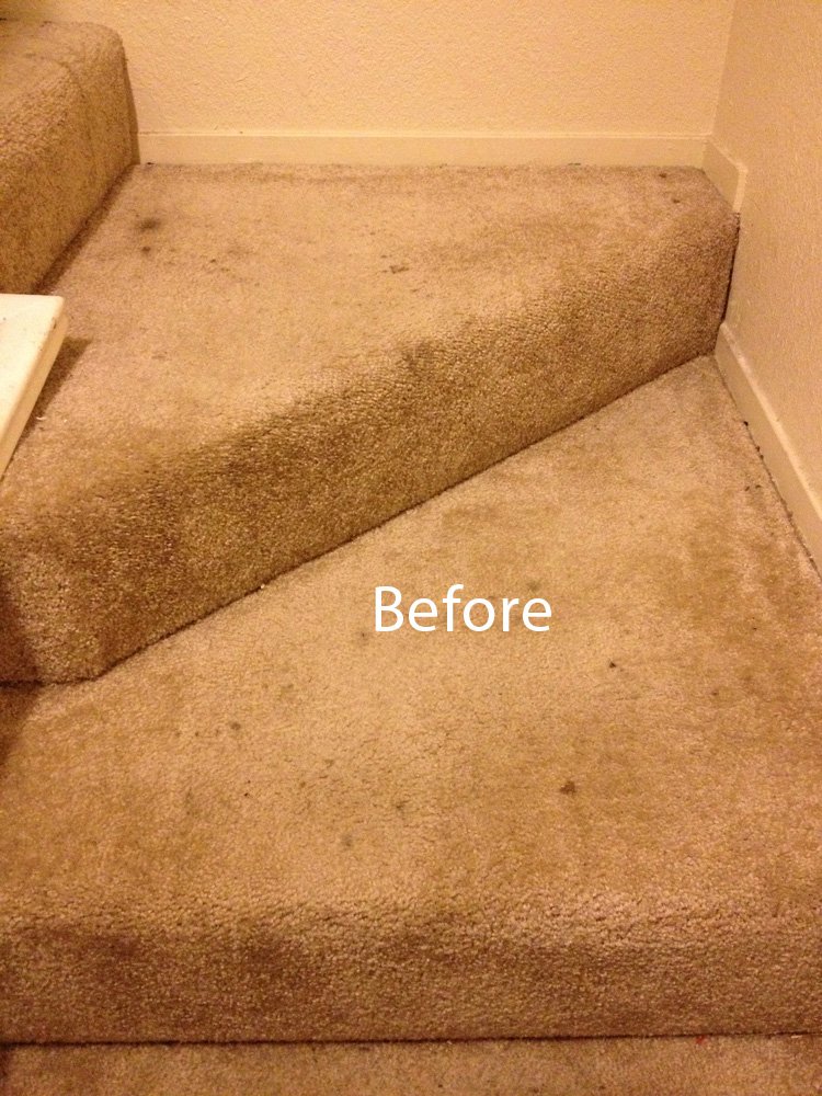 ... Stairs Carpet Cleaning West Palm Beach A ...