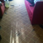 West Palm Beach-Carpet-Clean-before