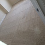 West Palm Beach-Carpet-Clean-room
