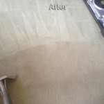 West Palm Beach-Carpet-Cleaning-Company