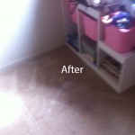 West Palm BeachWall2WallCarpetSteamCleaningB