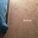 ink stain removal West Palm Beach-A