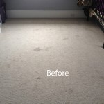 Cranberry-Juice-Stain-Removal-West Palm Beach-A