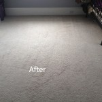 Cranberry-Juice-Stain-Removal-West Palm Beach-B