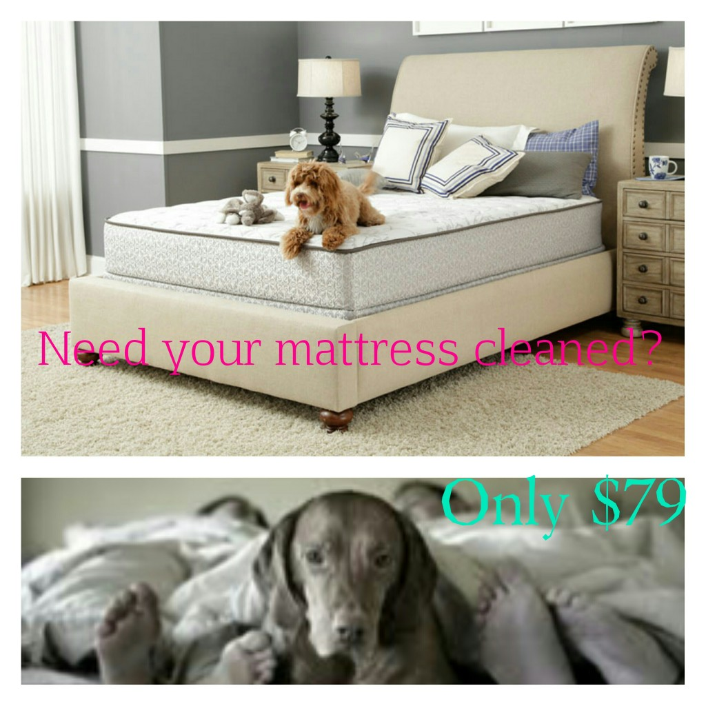Mattress Cleaning West Palm Beach Florida